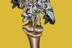 94-plantcolor
