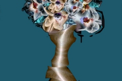 98-plantcolor
