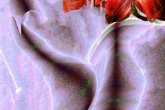 avatarasvase35fill4